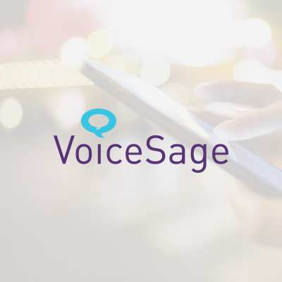 VoiceSage Investment Summary